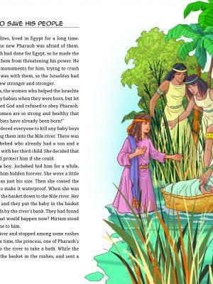 The junior Bible inside